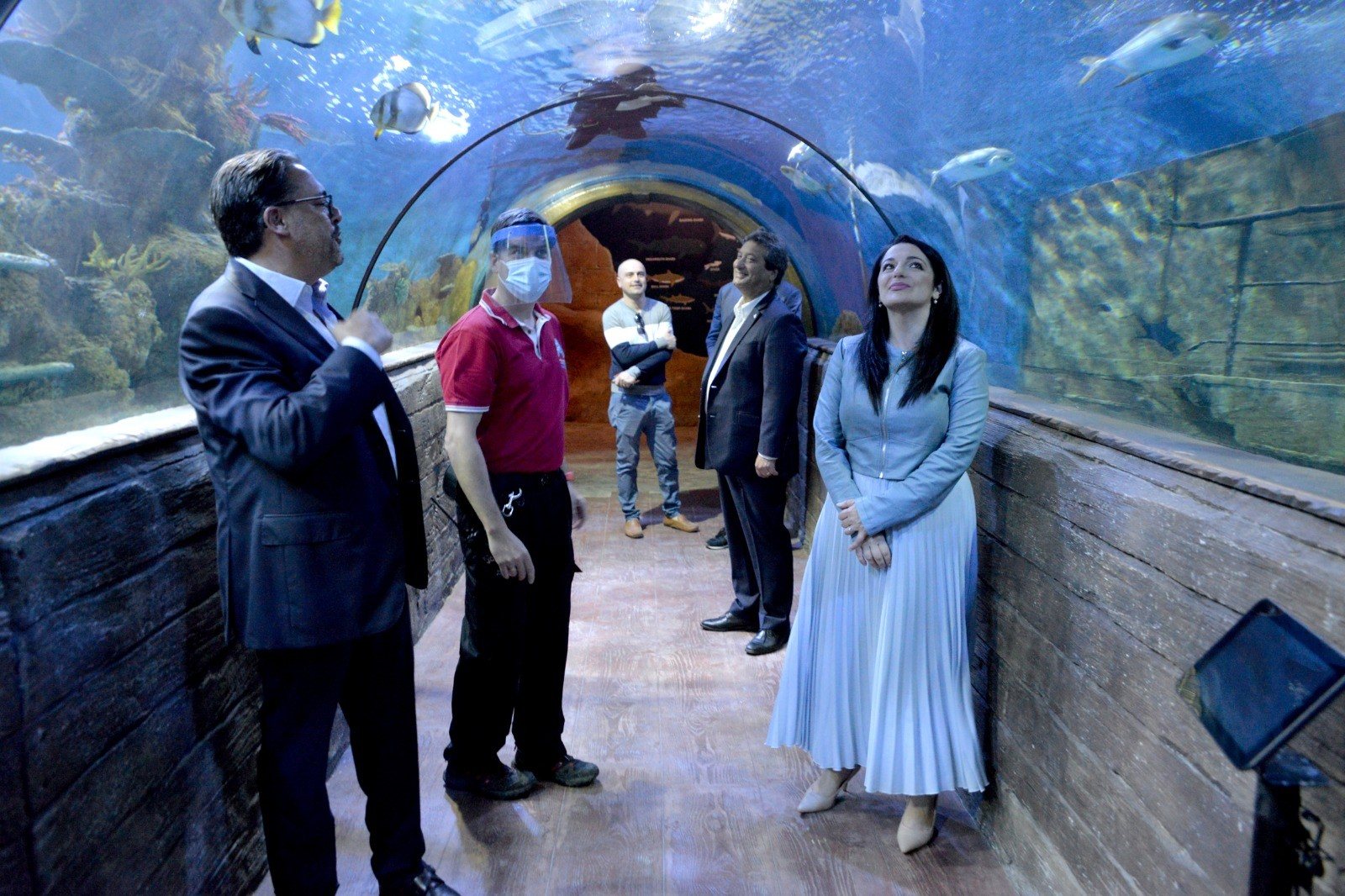 PRESS RELEASE BY THE MINISTRY FOR TOURISM AND CONSUMER PROTECTION   Over €600,000 investment at the Malta National Aquarium during COVID-19